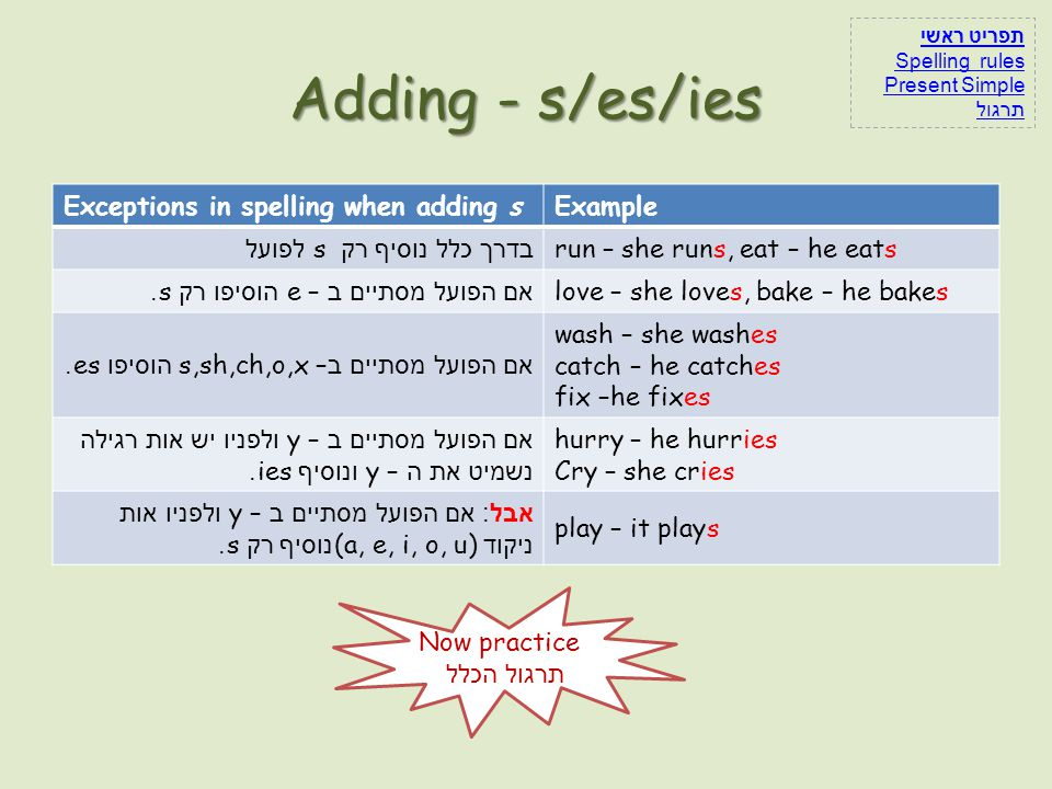 Adding - s/es/ies Exceptions in spelling when adding s Example