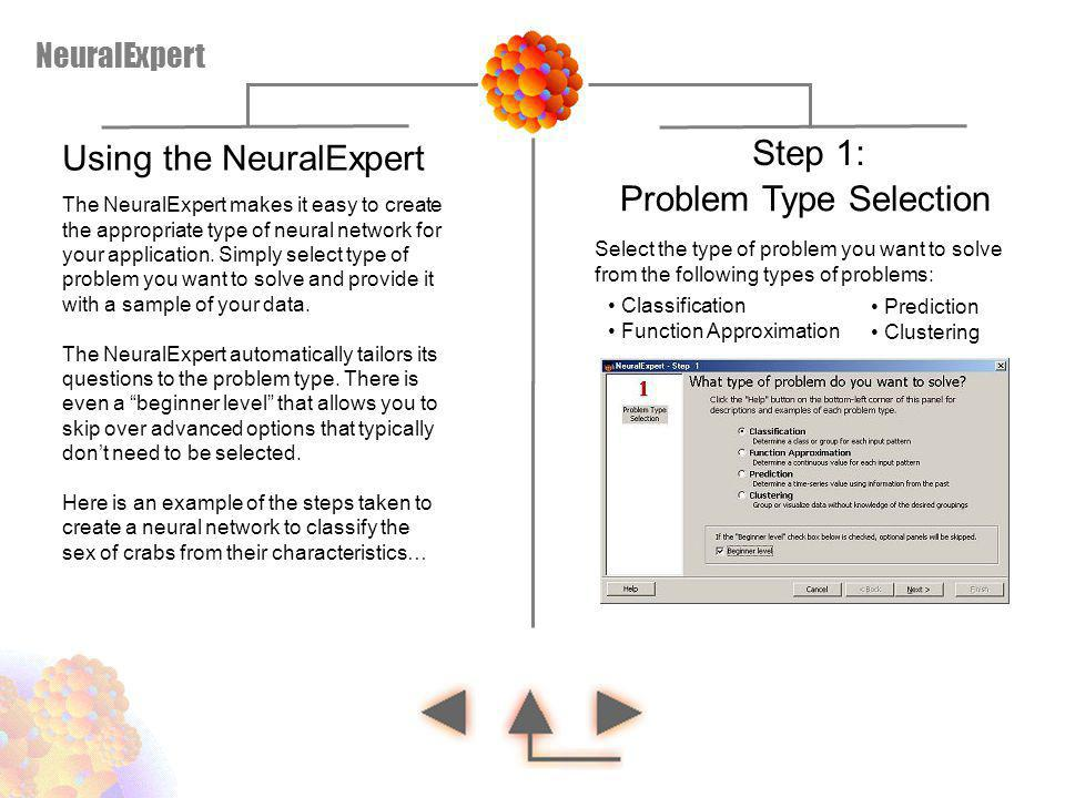 Using the NeuralExpert Step 1: Problem Type Selection