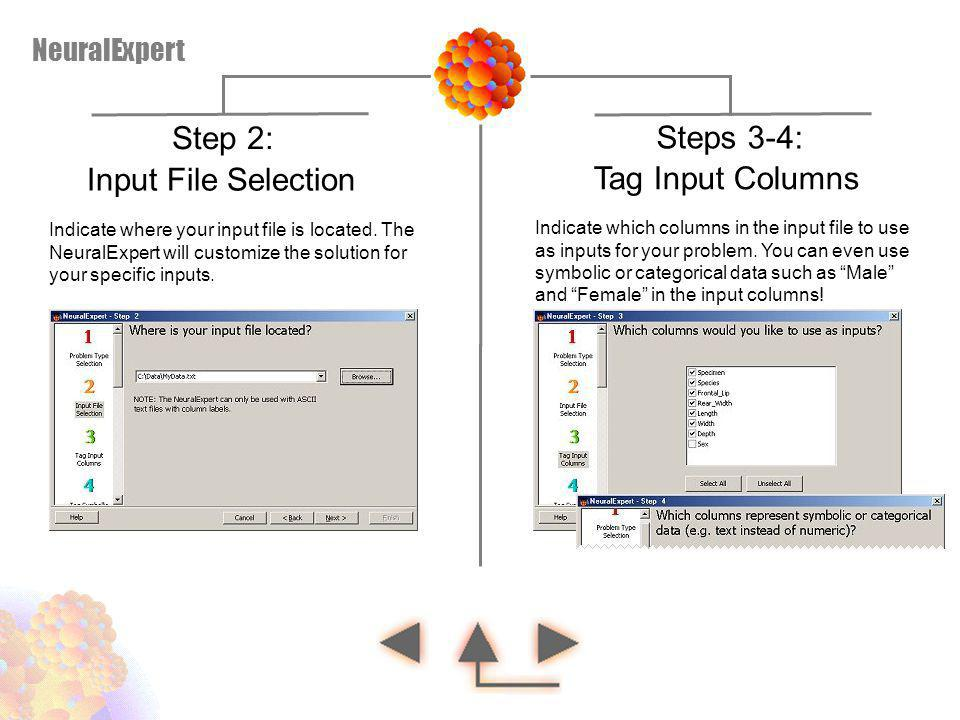 Step 2: Steps 3-4: Input File Selection Tag Input Columns NeuralExpert