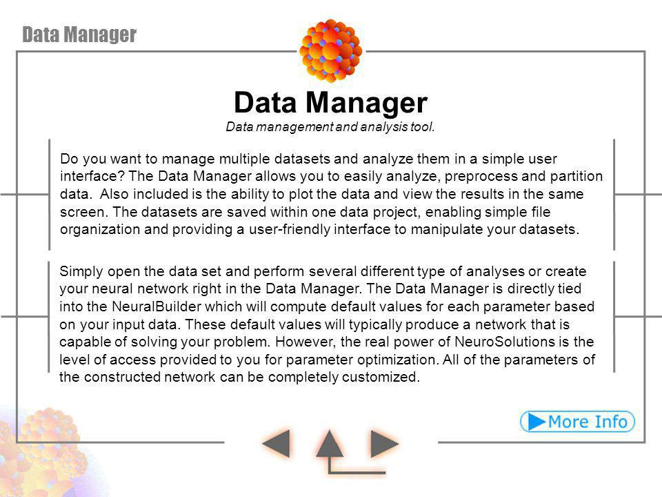 Data Manager Data Manager