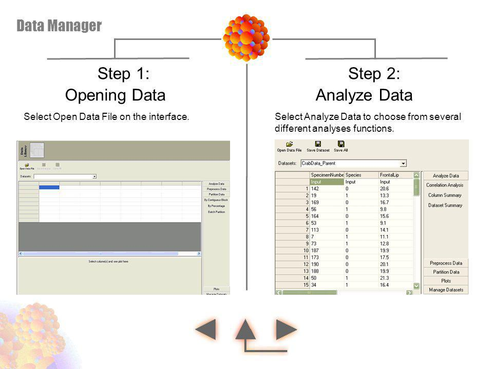 Step 1: Step 2: Opening Data Analyze Data Data Manager