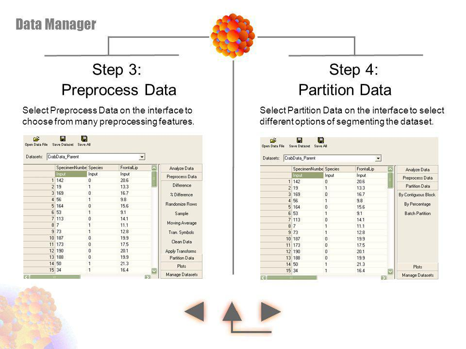 Step 3: Step 4: Preprocess Data Partition Data Data Manager