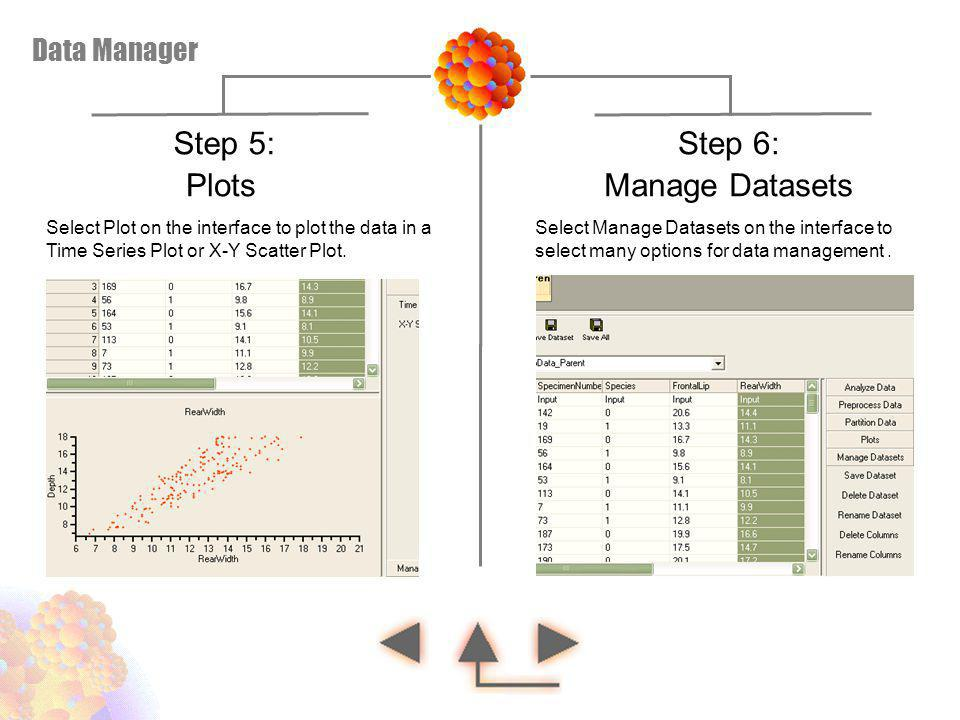 Step 5: Step 6: Plots Manage Datasets Data Manager
