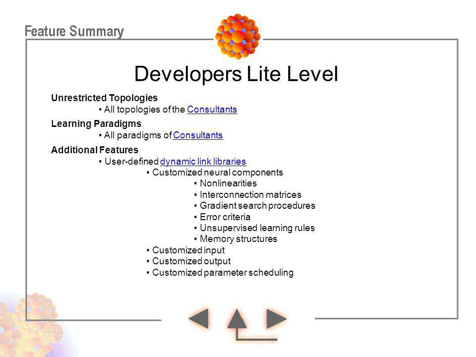 Developers Lite Level Unrestricted Topologies