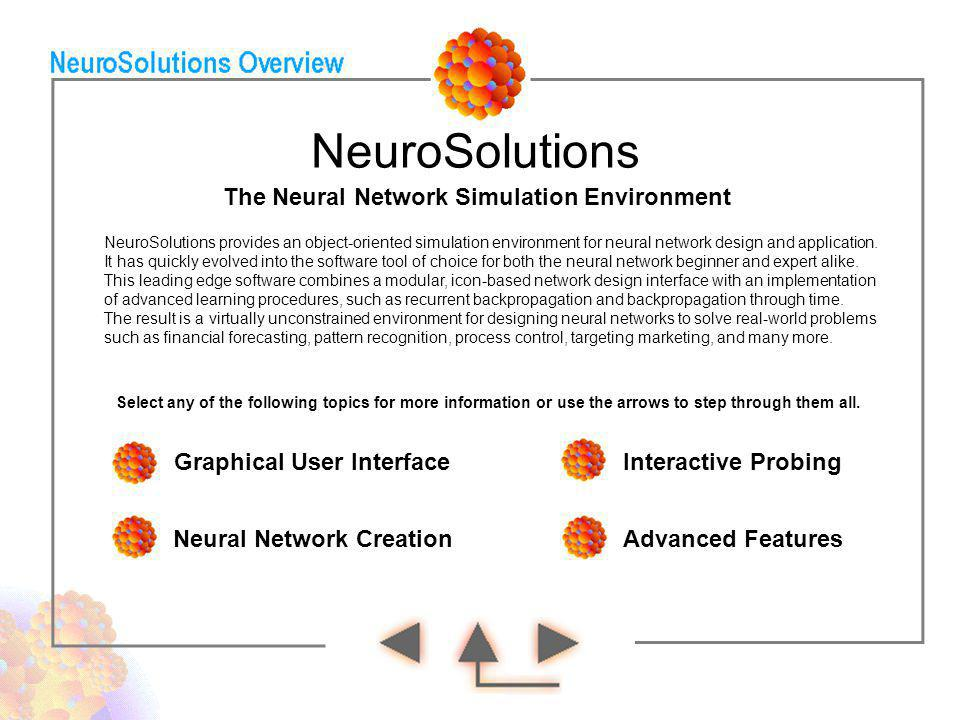 The Neural Network Simulation Environment