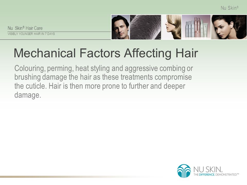 Mechanical Factors Affecting Hair