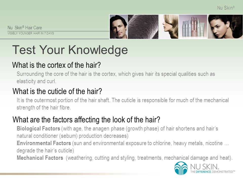 Test Your Knowledge What is the cortex of the hair