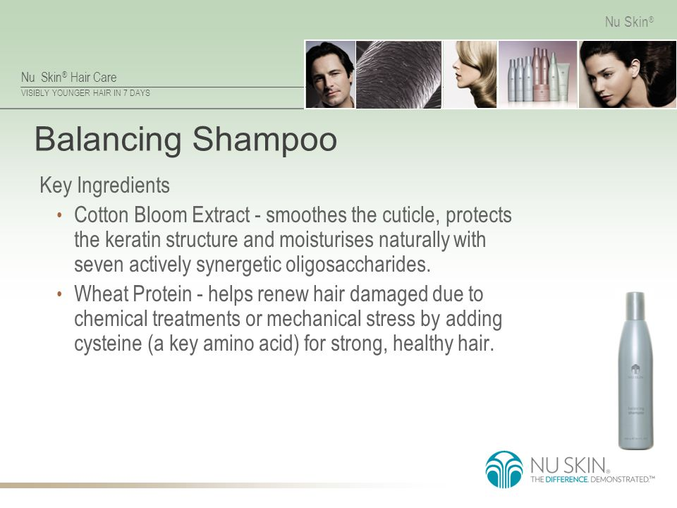 Balancing Shampoo Key Ingredients