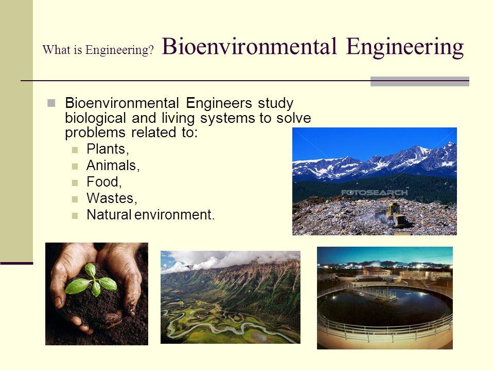 What is Engineering Bioenvironmental Engineering