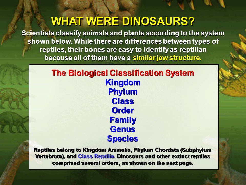 WHAT WERE DINOSAURS The Biological Classification System Kingdom