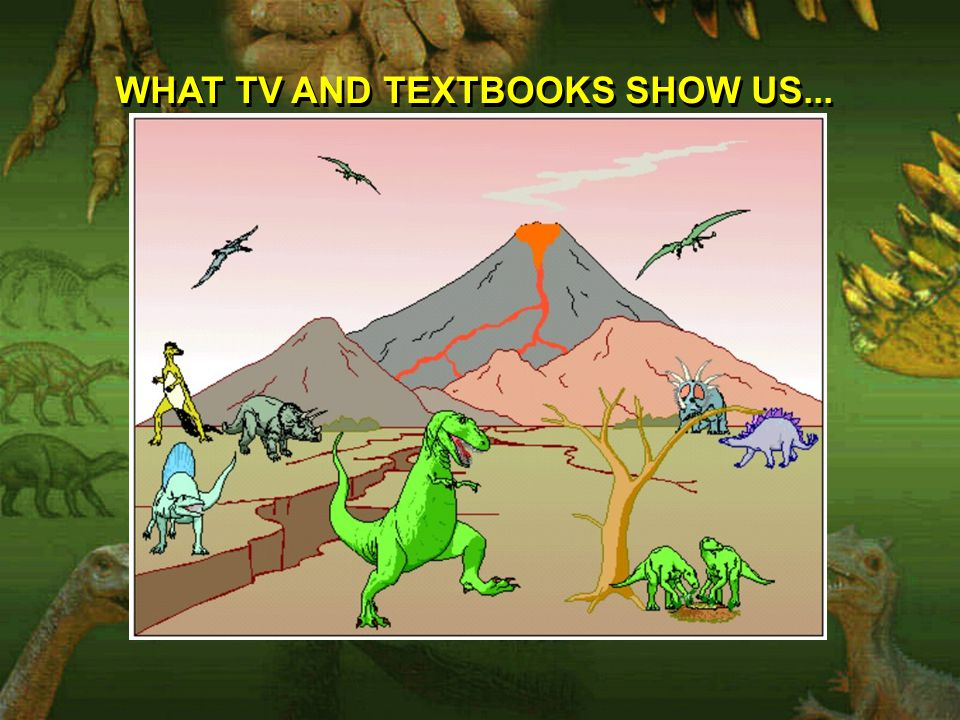 WHAT TV AND TEXTBOOKS SHOW US...