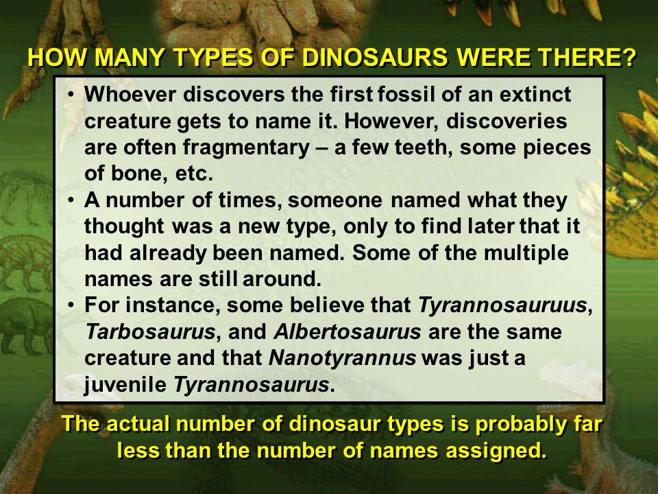 HOW MANY TYPES OF DINOSAURS WERE THERE