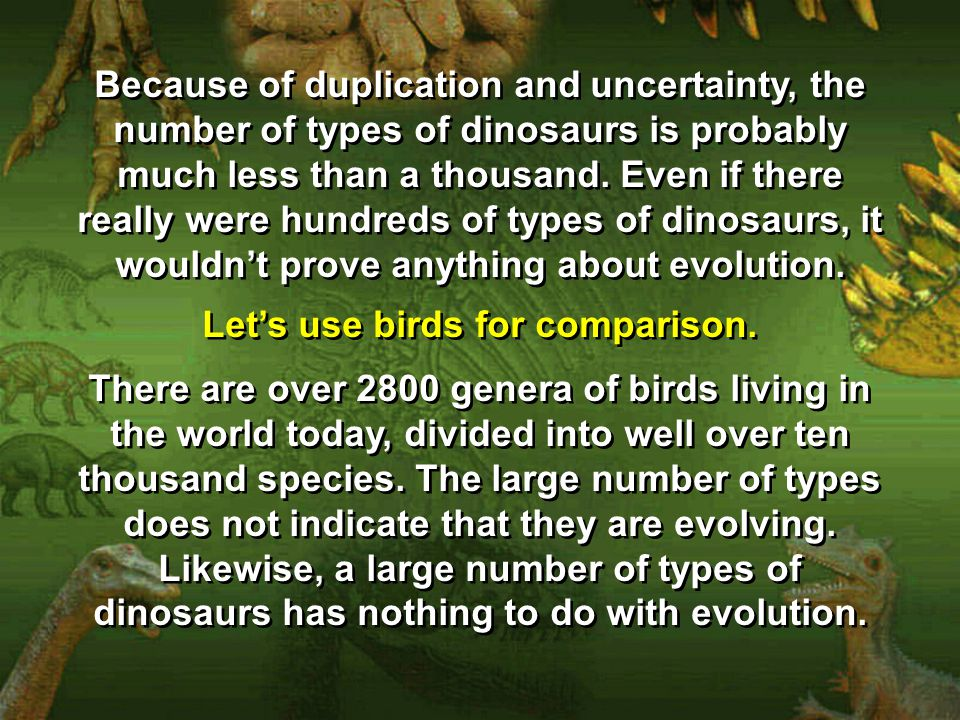 Let's use birds for comparison.