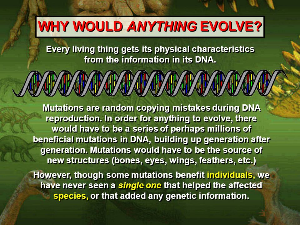 WHY WOULD ANYTHING EVOLVE