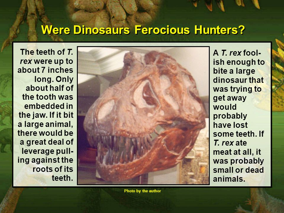 Were Dinosaurs Ferocious Hunters