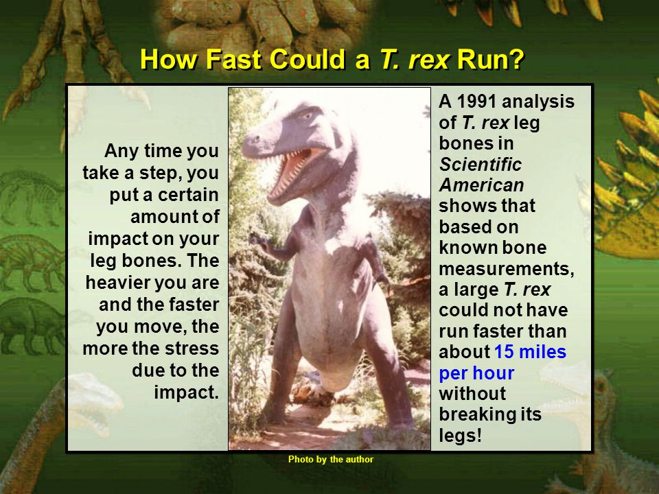 How Fast Could a T. rex Run
