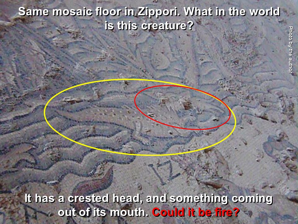 Same mosaic floor in Zippori. What in the world is this creature