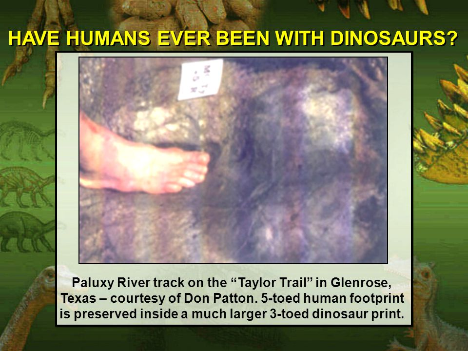 HAVE HUMANS EVER BEEN WITH DINOSAURS