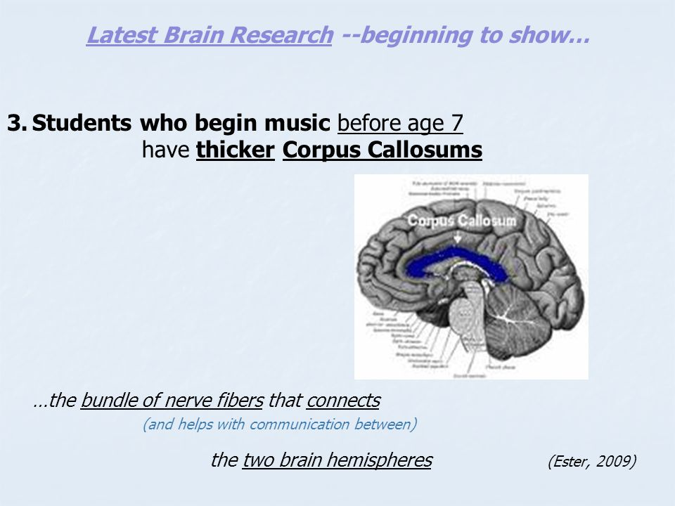 Latest Brain Research --beginning to show…