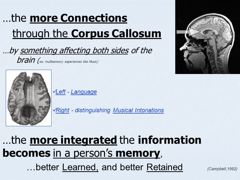 through the Corpus Callosum