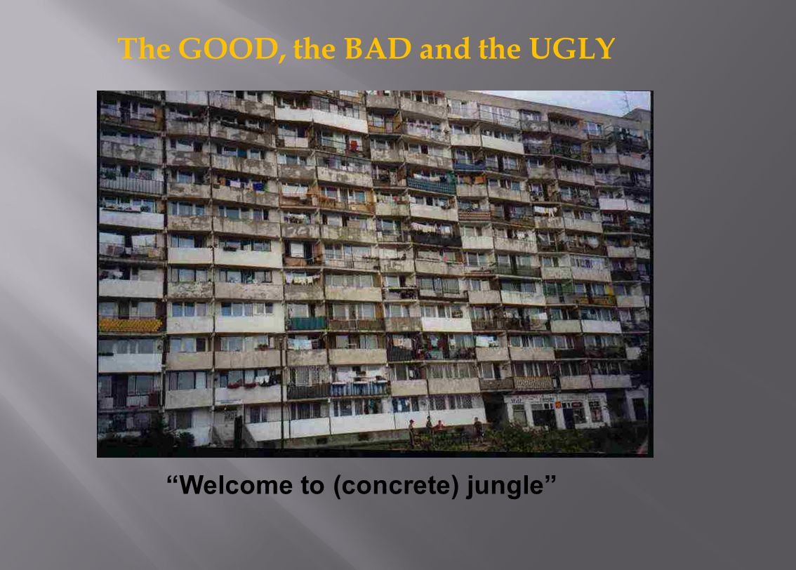The GOOD, the BAD and the UGLY Welcome to (concrete) jungle