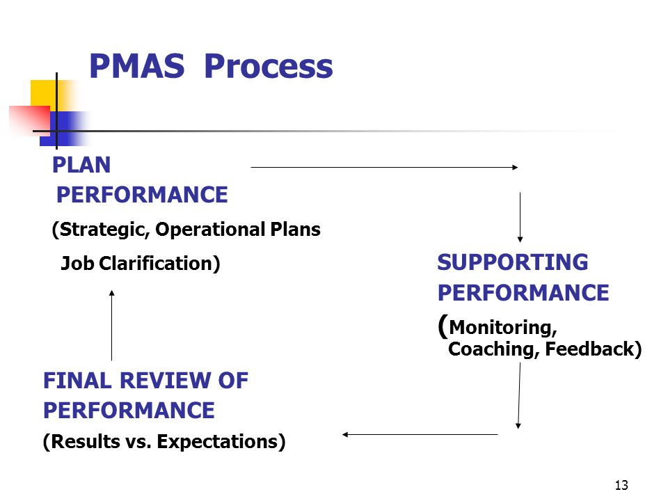 PMAS Process PLAN (Strategic, Operational Plans
