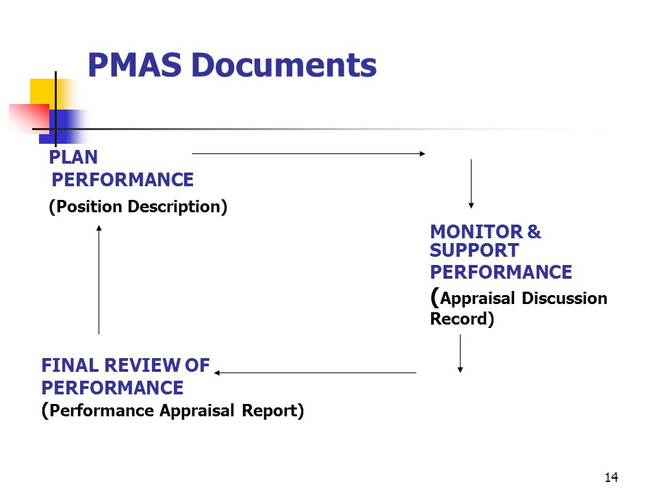 PMAS Documents PLAN (Position Description) MONITOR & SUPPORT