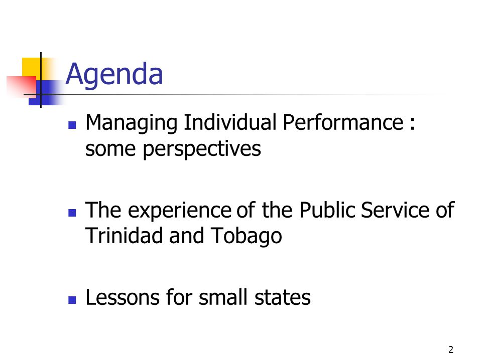 Agenda Managing Individual Performance : some perspectives