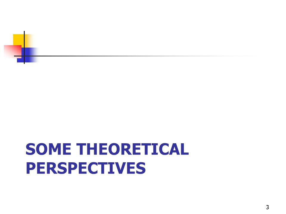 Some theoretical perspectives