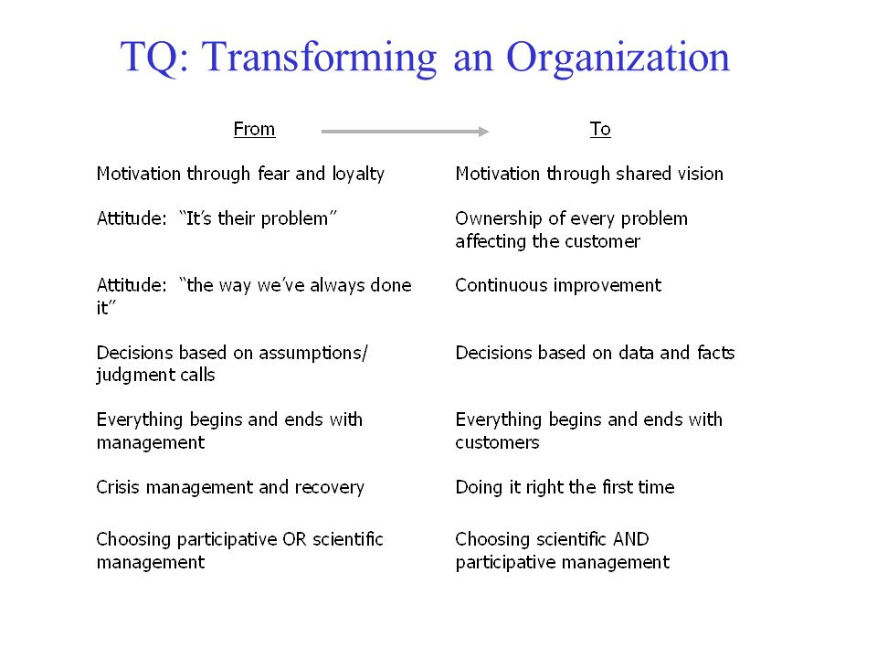 TQ: Transforming an Organization