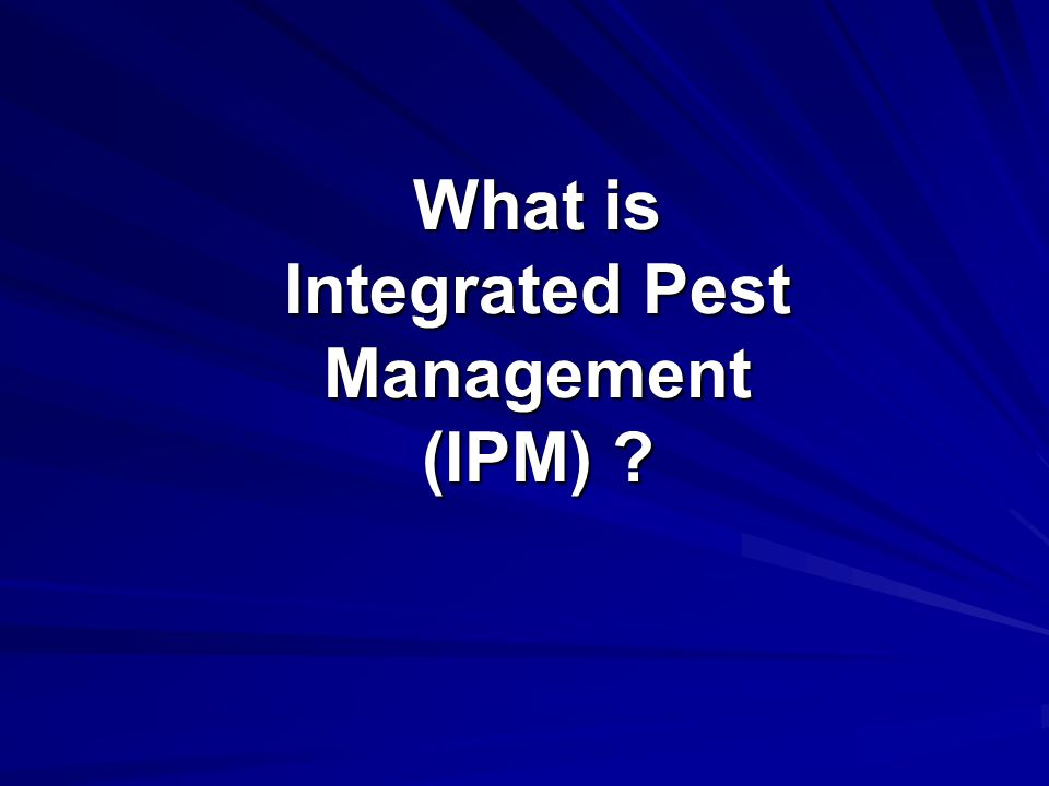 What is Integrated Pest Management (IPM)