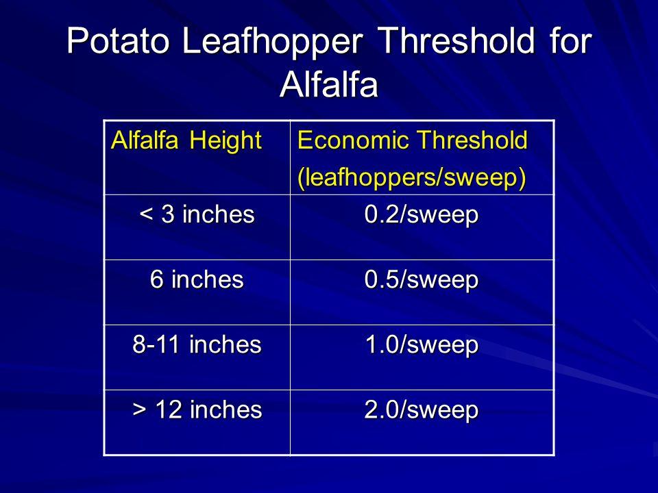 Potato Leafhopper Threshold for Alfalfa