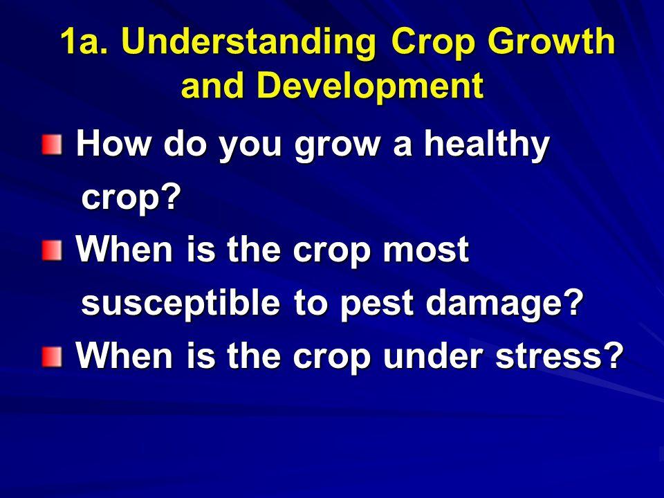 1a. Understanding Crop Growth and Development