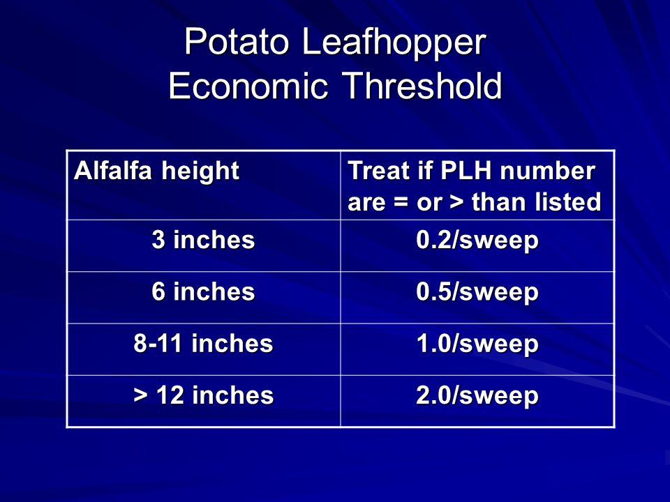 Potato Leafhopper Economic Threshold
