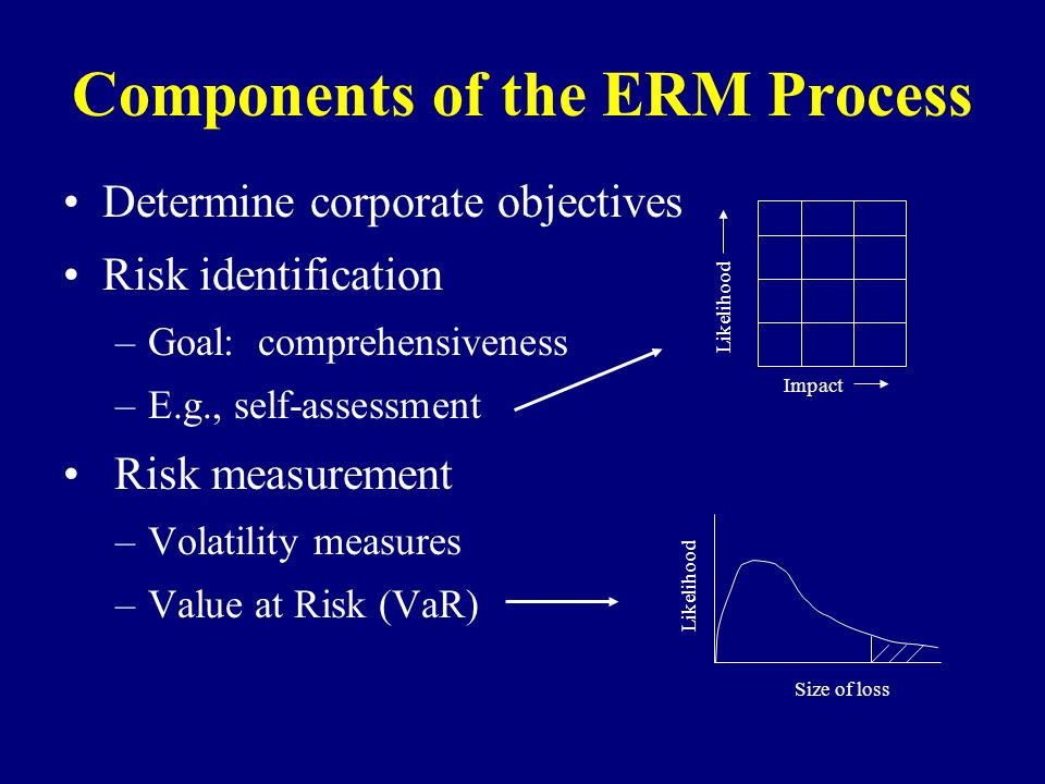 Components of the ERM Process