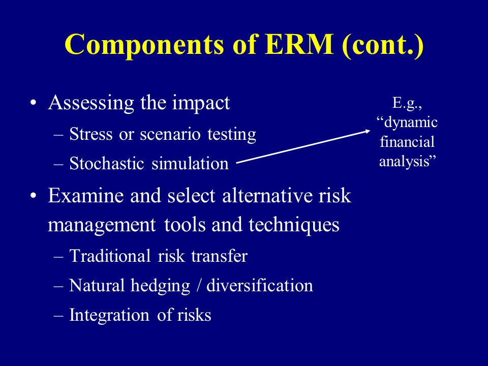 Components of ERM (cont.)