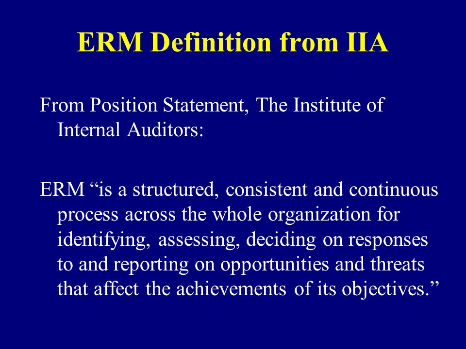 ERM Definition from IIA