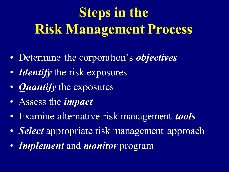 Steps in the Risk Management Process