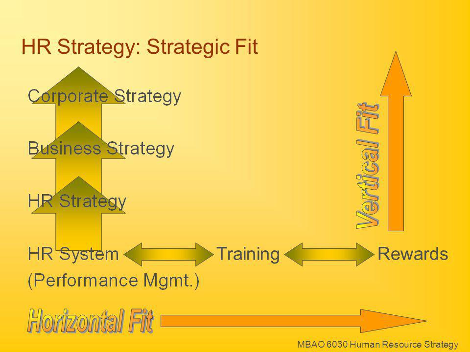 HR Strategy: Strategic Fit