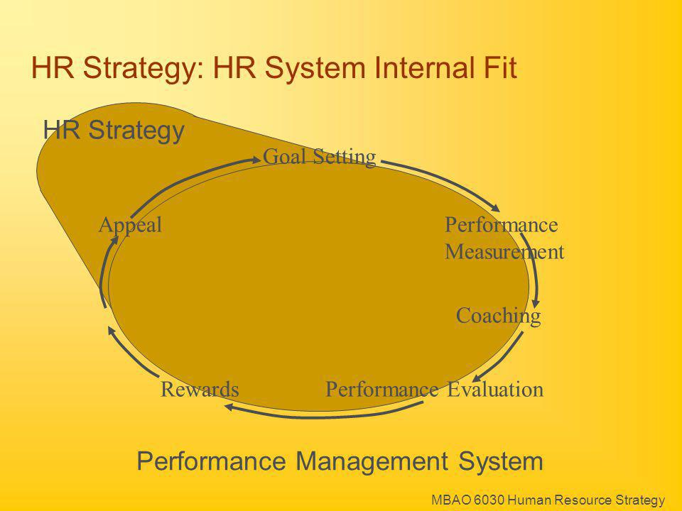 HR Strategy: HR System Internal Fit