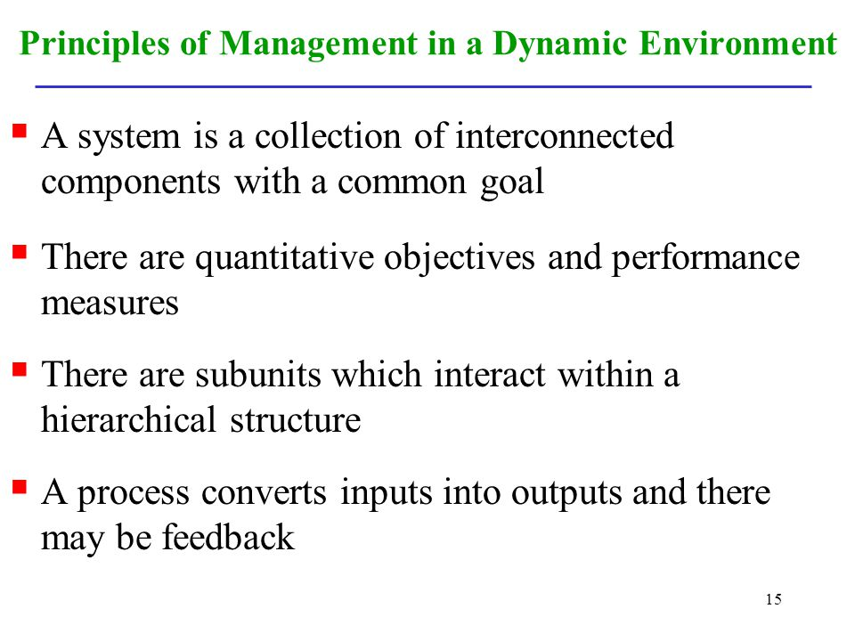 Principles of Management in a Dynamic Environment