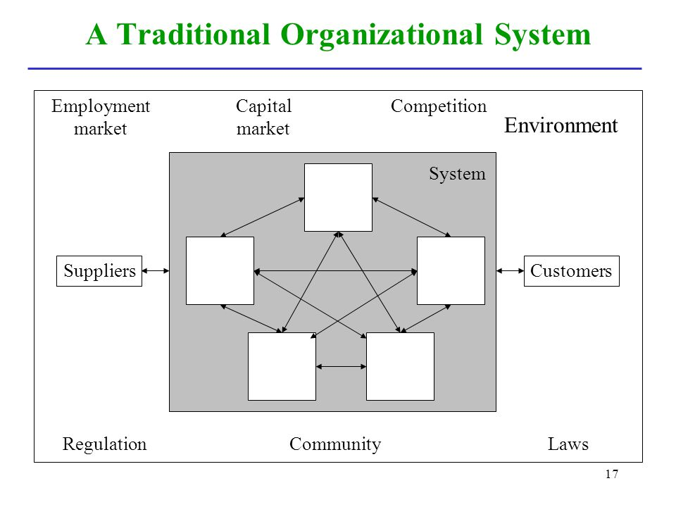 A Traditional Organizational System
