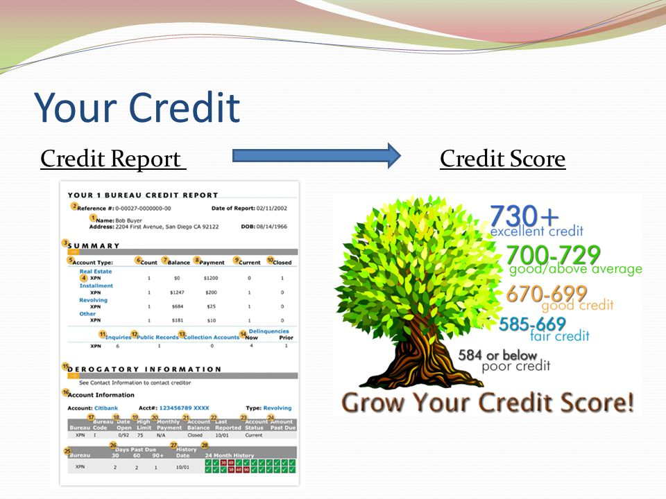 Your Credit Credit Report Credit Score
