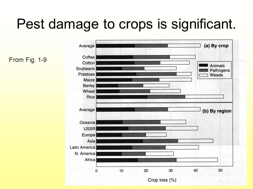 Pest damage to crops is significant.