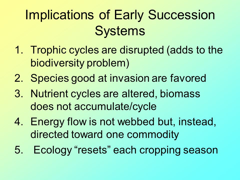 Implications of Early Succession Systems