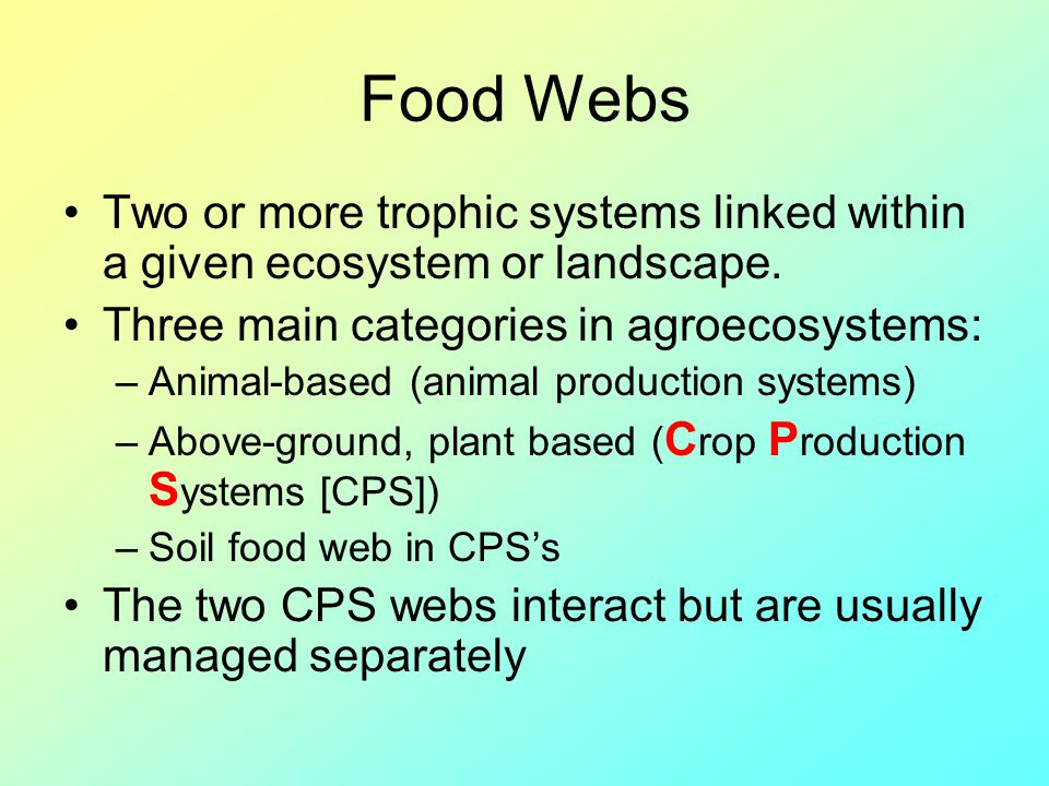 Food Webs Two or more trophic systems linked within a given ecosystem or landscape. Three main categories in agroecosystems: