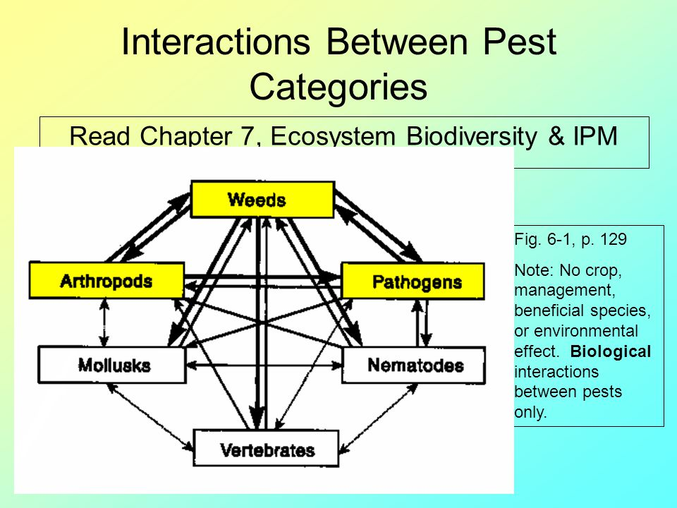 Interactions Between Pest Categories