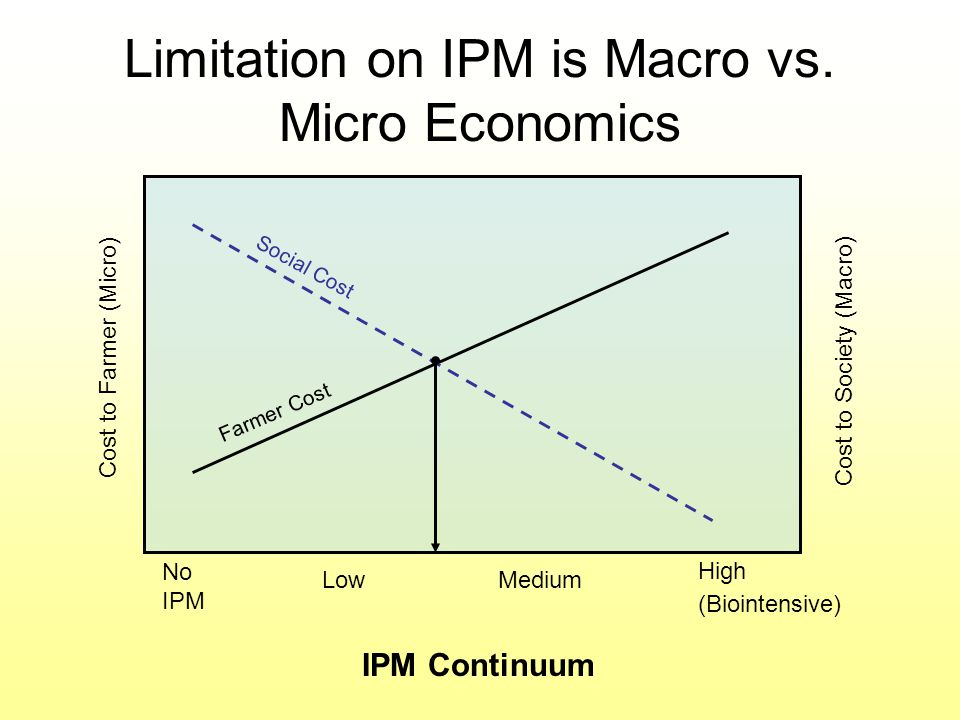 Limitation on IPM is Macro vs. Micro Economics