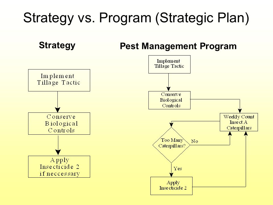 Strategy vs. Program (Strategic Plan)