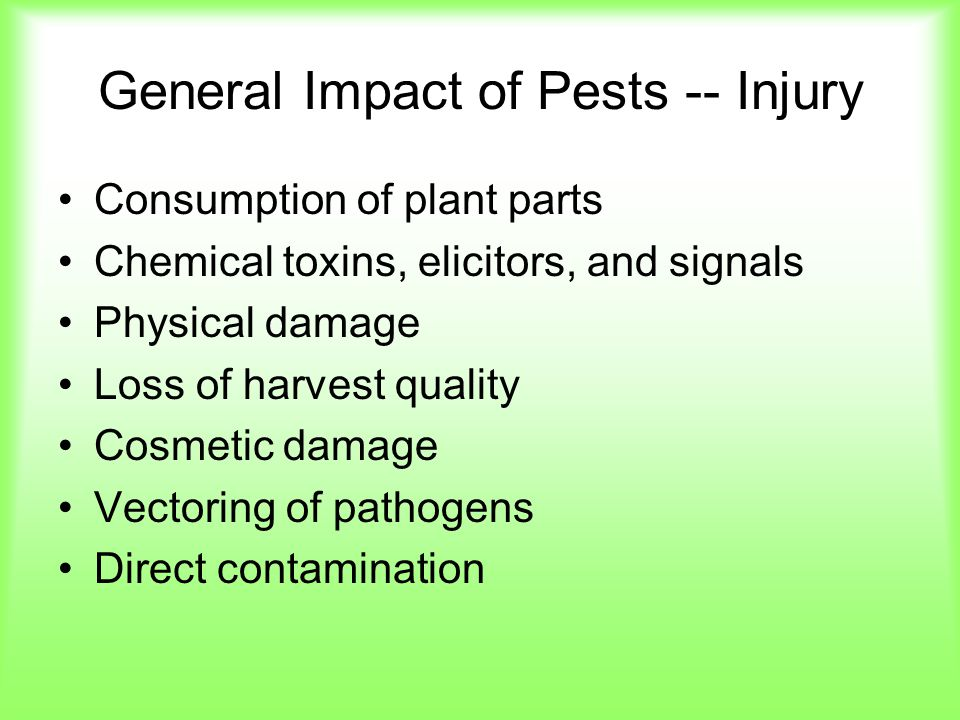 General Impact of Pests -- Injury